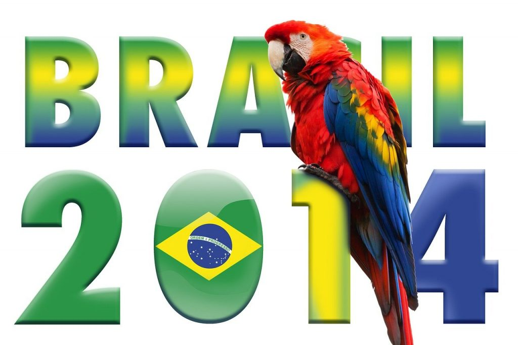 world cup, parrot, soccer